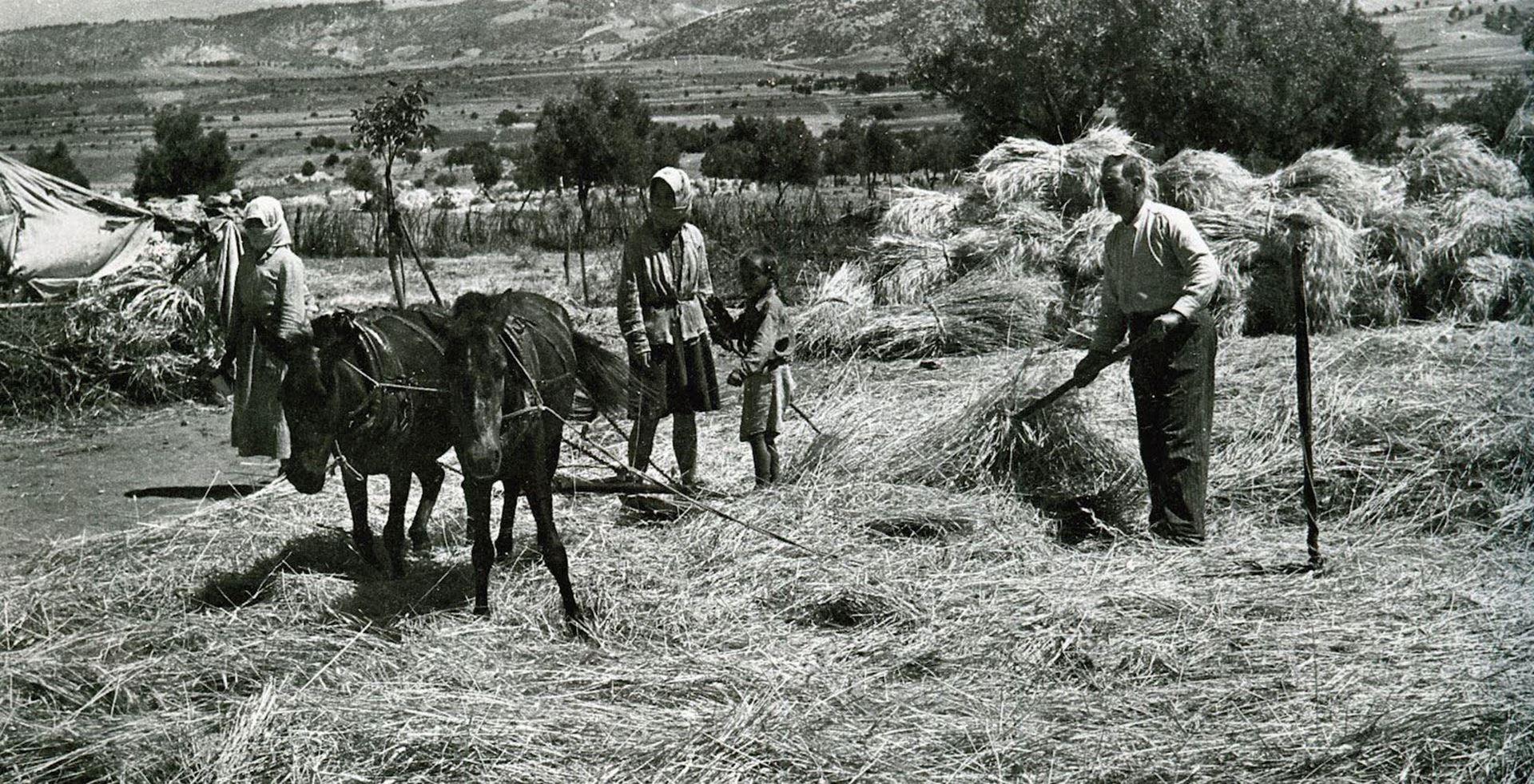 Εικόνα από Ιστορικό